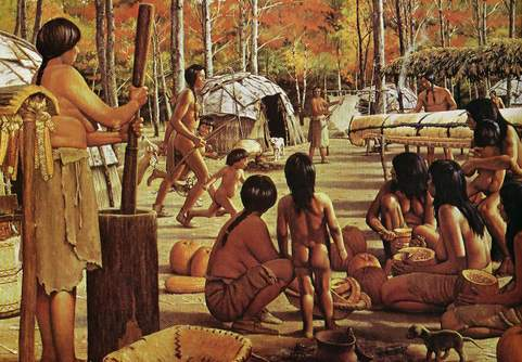 Algonquin Tribe History http://wiki.answers.com/Q/What_kind_of_clothes_did_the_potawatomi_wear